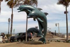 Dolphin Repatina